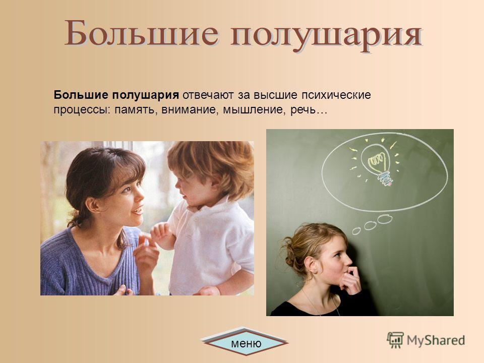 меню Большие полушария отвечают за высшие психические процессы: память, внимание, мышление, речь…