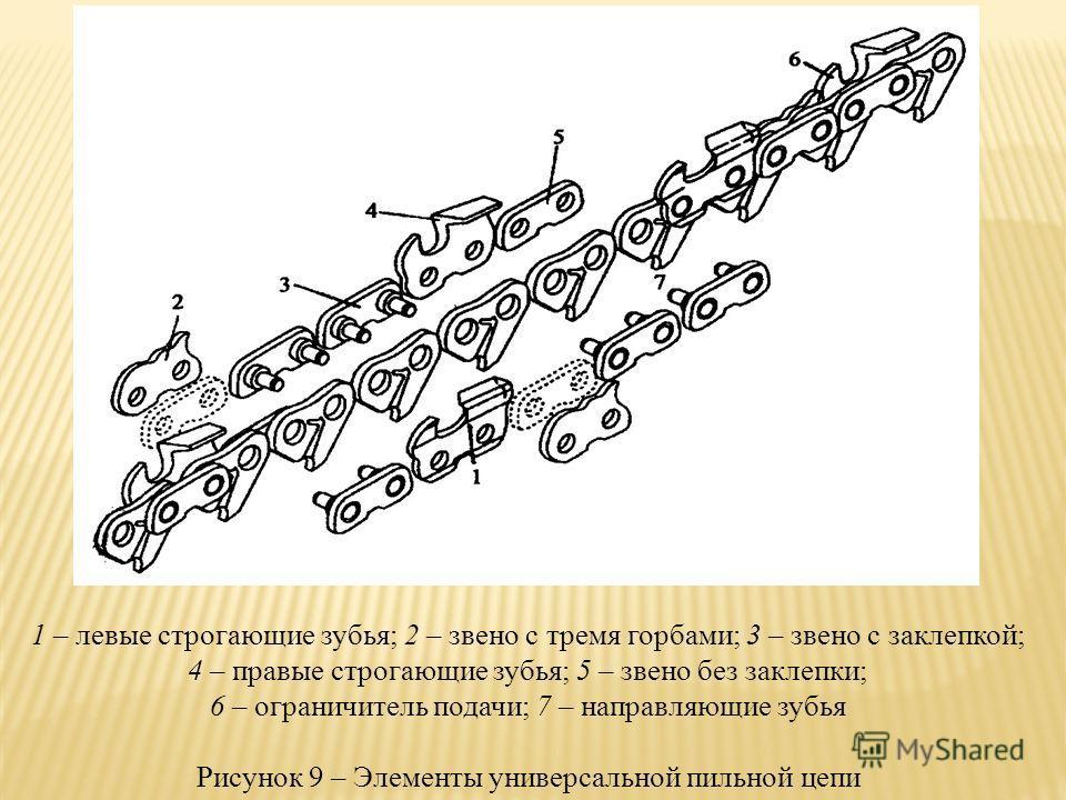 1 – левые строгающие зубья; 2 – звено с тремя горбами; 3 – звено с заклепкой; 4 – правые строгающие зубья; 5 – звено без заклепки; 6 – ограничитель подачи; 7 – направляющие зубья Рисунок 9 – Элементы универсальной пильной цепи