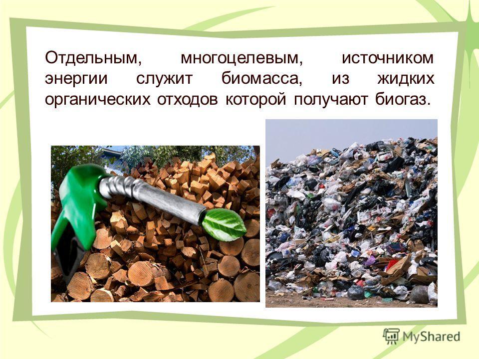 Отдельным, многоцелевым, источником энергии служит биомасса, из жидких органических отходов которой получают биогаз.