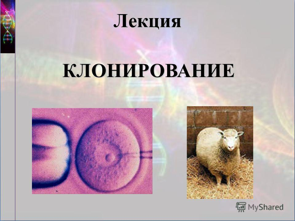 Лекция КЛОНИРОВАНИЕ