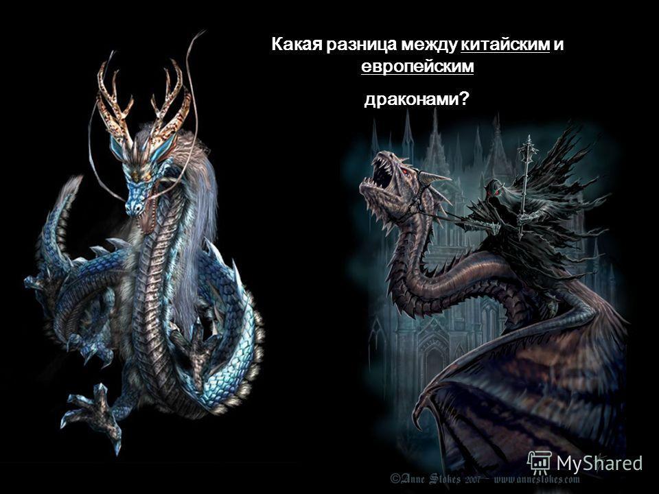 Какая разница между китайским и европейским драконами?
