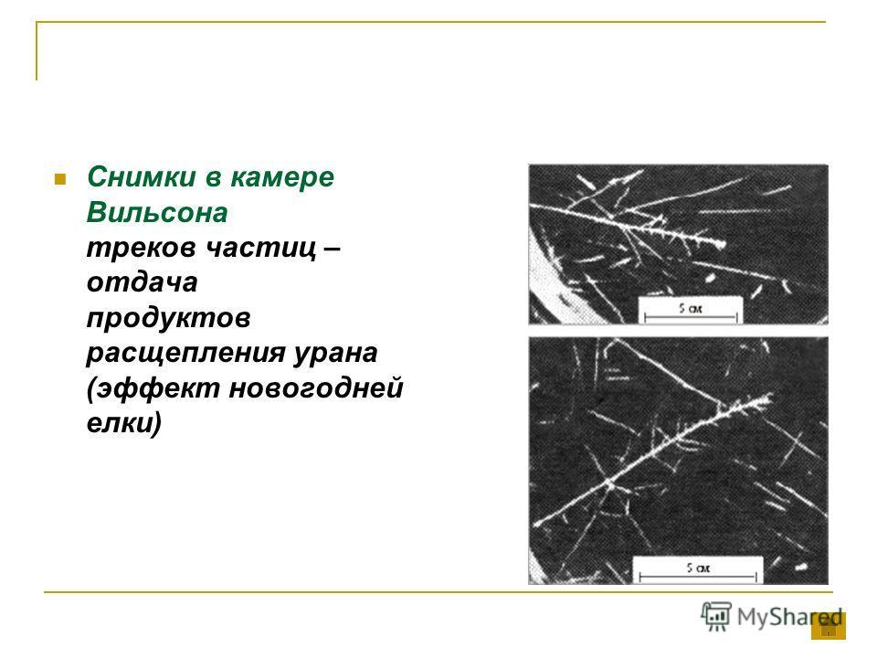Снимки в камере Вильсона треков частиц – отдача продуктов расщепления урана (эффект новогодней елки)