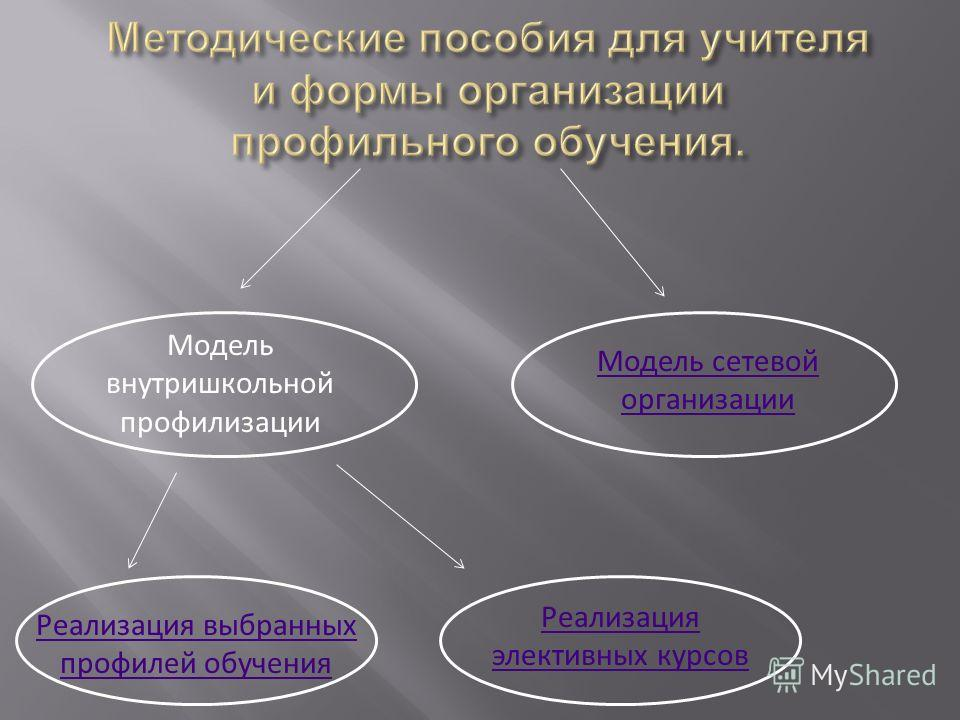 Модель внутришкольной профилизации Модель сетевой организации Реализация выбранных профилей обучения Реализация элективных курсов