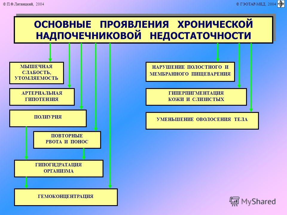 © П.Ф.Литвицкий, 2004 © ГЭОТАР-МЕД, 2004 ОСНОВНЫЕ ПРОЯВЛЕНИЯ ХРОНИЧЕСКОЙ НАДПОЧЕЧНИКОВОЙ НЕДОСТАТОЧНОСТИ ГИПОГИДРАТАЦИЯ ОРГАНИЗМА МЫШЕЧНАЯ СЛАБОСТЬ, УТОМЛЯЕМОСТЬ НАРУШЕНИЕ ПОЛОСТНОГО И МЕМБРАННОГО ПИЩЕВАРЕНИЯ ГИПЕРПИГМЕНТАЦИЯ КОЖИ И СЛИЗИСТЫХ АРТЕРИА