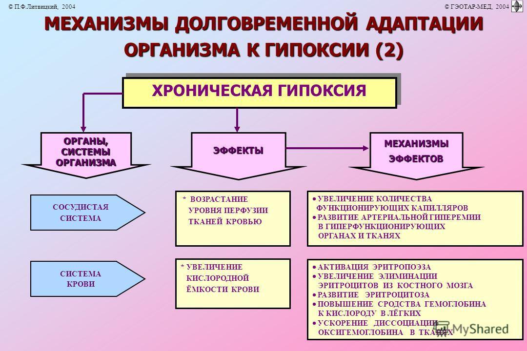 * УВЕЛИЧЕНИЕ КИСЛОРОДНОЙ ЁМКОСТИ КРОВИ АКТИВАЦИЯ ЭРИТРОПОЭЗА УВЕЛИЧЕНИЕ ЭЛИМИНАЦИИ ЭРИТРОЦИТОВ ИЗ КОСТНОГО МОЗГА РАЗВИТИЕ ЭРИТРОЦИТОЗА ПОВЫШЕНИЕ СРОДСТВА ГЕМОГЛОБИНА К КИСЛОРОДУ В ЛЁГКИХ УСКОРЕНИЕ ДИССОЦИАЦИИ ОКСИГЕМОГЛОБИНА В ТКАНЯХ * ВОЗРАСТАНИЕ УР