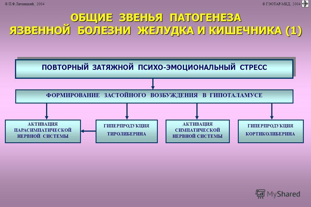 © П.Ф.Литвицкий, 2004 © ГЭОТАР-МЕД, 2004 ОБЩИЕ ЗВЕНЬЯ ПАТОГЕНЕЗА ОБЩИЕ ЗВЕНЬЯ ПАТОГЕНЕЗА ЯЗВЕННОЙ БОЛЕЗНИ ЖЕЛУДКА И КИШЕЧНИКА (1) ЯЗВЕННОЙ БОЛЕЗНИ ЖЕЛУДКА И КИШЕЧНИКА (1) ПОВТОРНЫЙ ЗАТЯЖНОЙ ПСИХО-ЭМОЦИОНАЛЬНЫЙ СТРЕСС ФОРМИРОВАНИЕ ЗАСТОЙНОГО ВОЗБУЖДЕН