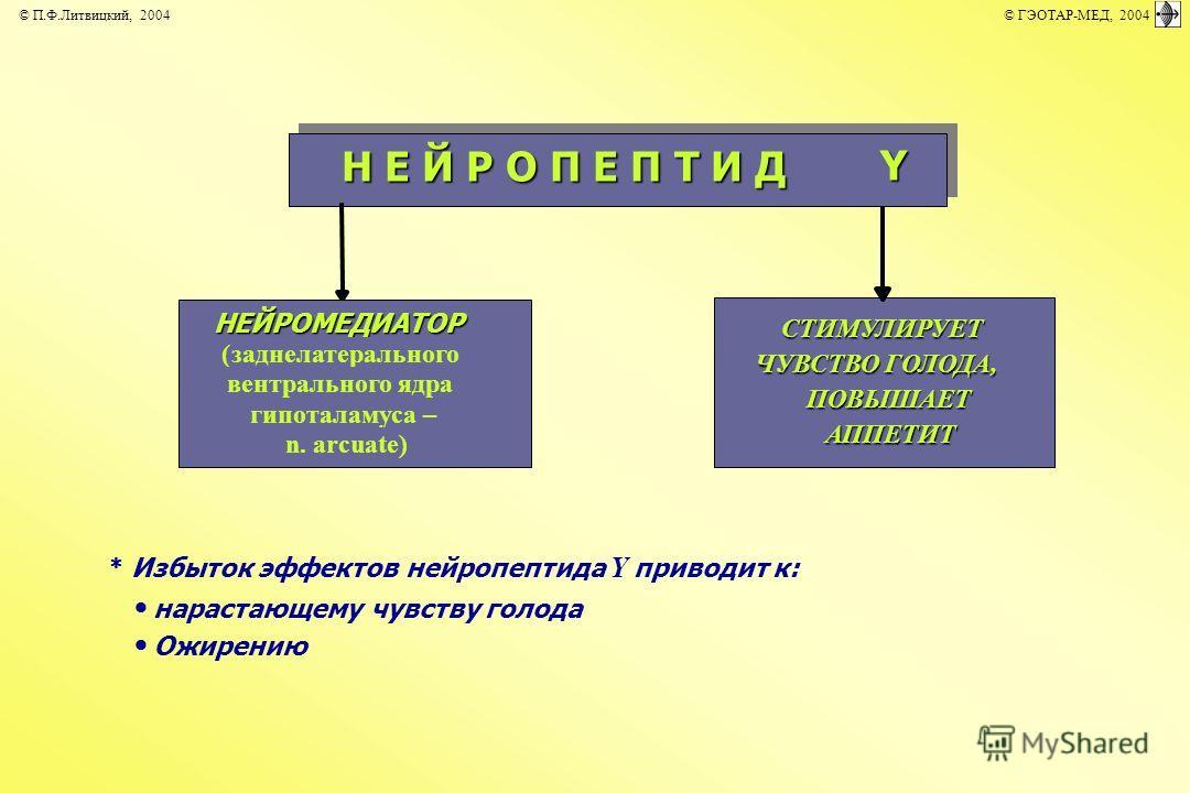 Избыток эффектов нейропептида Y приводит к: нарастающему чувству голода Ожирению Н Е Й Р О П Е П Т И Д Y НЕЙРОМЕДИАТОР (заднелатерального вентрального ядра гипоталамуса – n. arcuate) СТИМУЛИРУЕТ ЧУВСТВО ГОЛОДА, ПОВЫШАЕТ АППЕТИТ © П.Ф.Литвицкий, 2004
