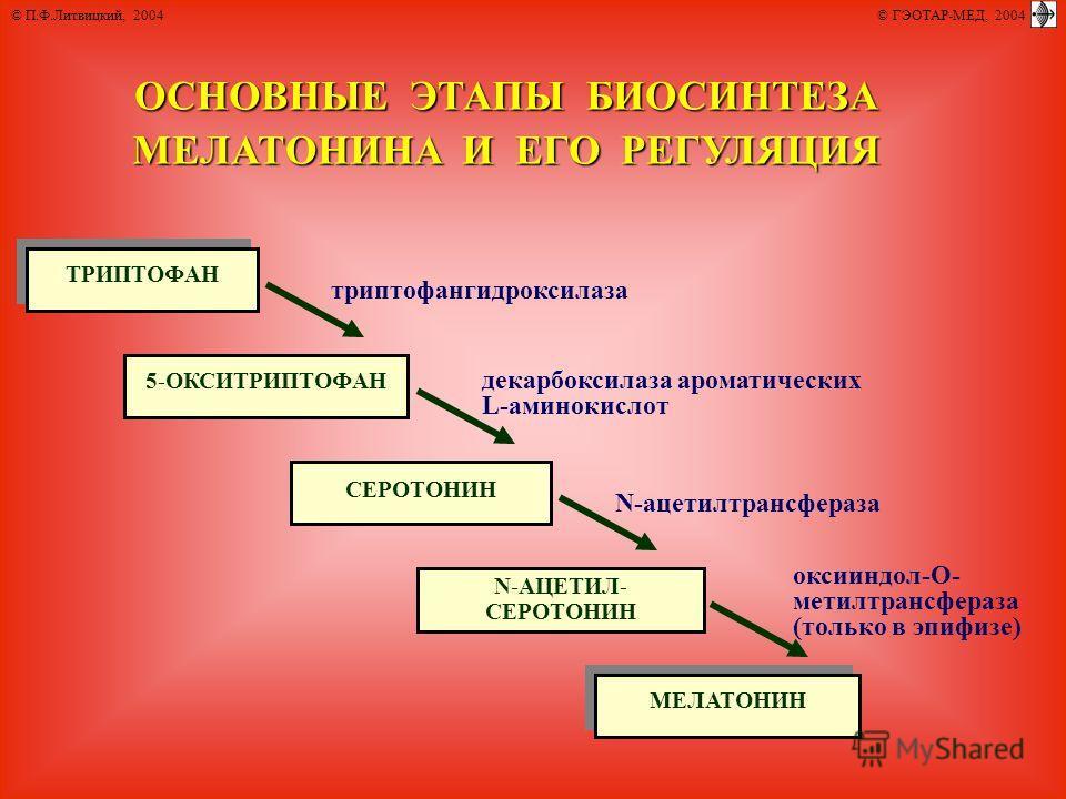 ОСНОВНЫЕ ЭТАПЫ БИОСИНТЕЗА МЕЛАТОНИНА И ЕГО РЕГУЛЯЦИЯ ТРИПТОФАН 5-ОКСИТРИПТОФАН СЕРОТОНИН N-АЦЕТИЛ- СЕРОТОНИН МЕЛАТОНИН триптофангидроксилаза декарбоксилаза ароматических L-аминокислот N-ацетилтрансфераза оксииндол-О- метилтрансфераза (только в эпифиз