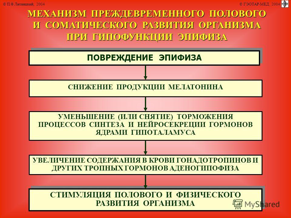 © П.Ф.Литвицкий, 2004 © ГЭОТАР-МЕД, 2004 МЕХАНИЗМ ПРЕЖДЕВРЕМЕННОГО ПОЛОВОГО И СОМАТИЧЕСКОГО РАЗВИТИЯ ОРГАНИЗМА ПРИ ГИПОФУНКЦИИ ЭПИФИЗА ПОВРЕЖДЕНИЕ ЭПИФИЗА СТИМУЛЯЦИЯ ПОЛОВОГО И ФИЗИЧЕСКОГО РАЗВИТИЯ ОРГАНИЗМА СТИМУЛЯЦИЯ ПОЛОВОГО И ФИЗИЧЕСКОГО РАЗВИТИЯ