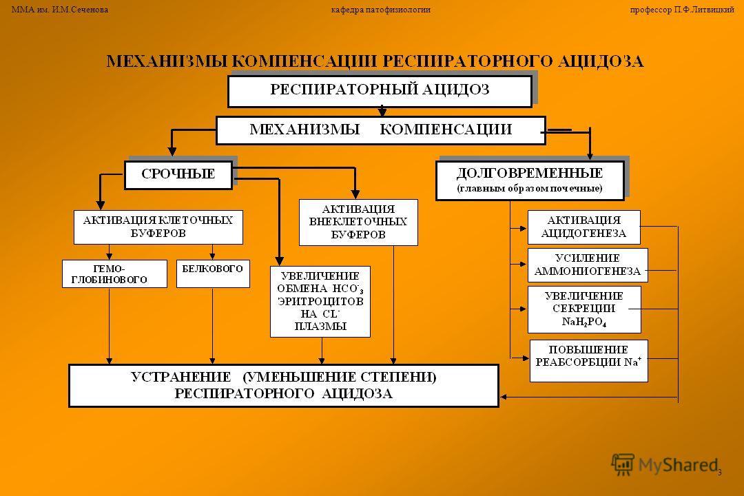 ММА им. И.М.Сеченова кафедра патофизиологии профессор П.Ф.Литвицкий 3