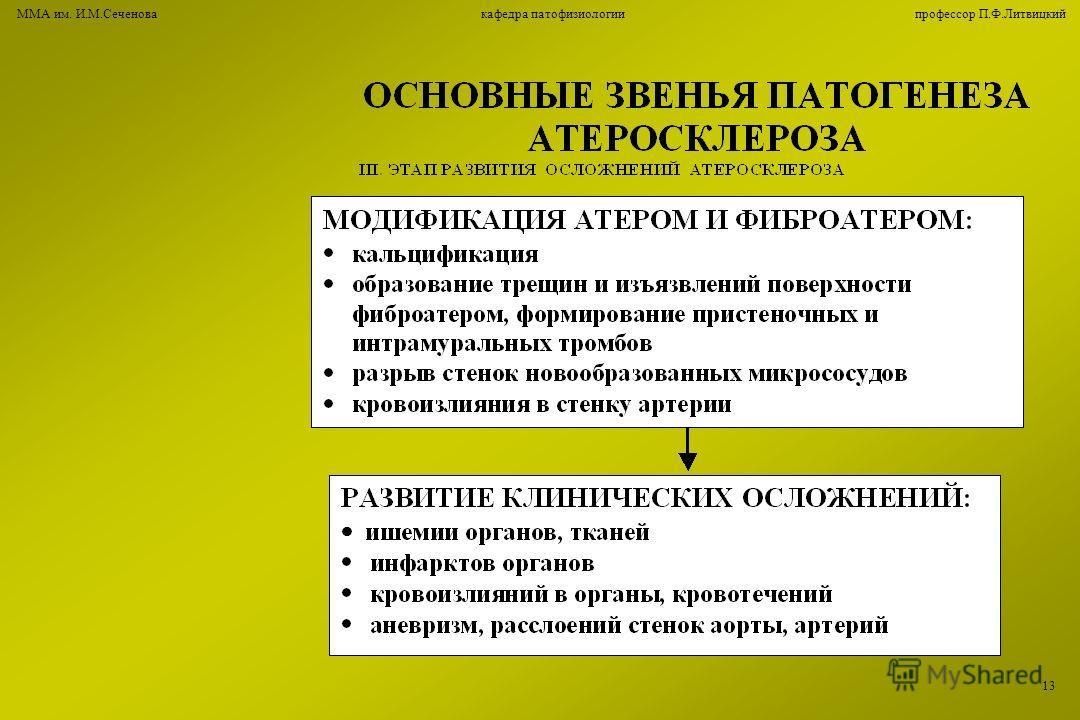 ММА им. И.М.Сеченова кафедра патофизиологии профессор П.Ф.Литвицкий 1313