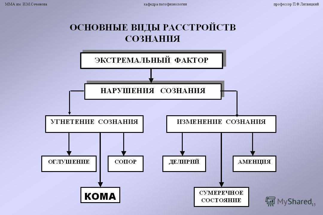 ММА им. И.М.Сеченова кафедра патофизиологии профессор П.Ф.Литвицкий 15