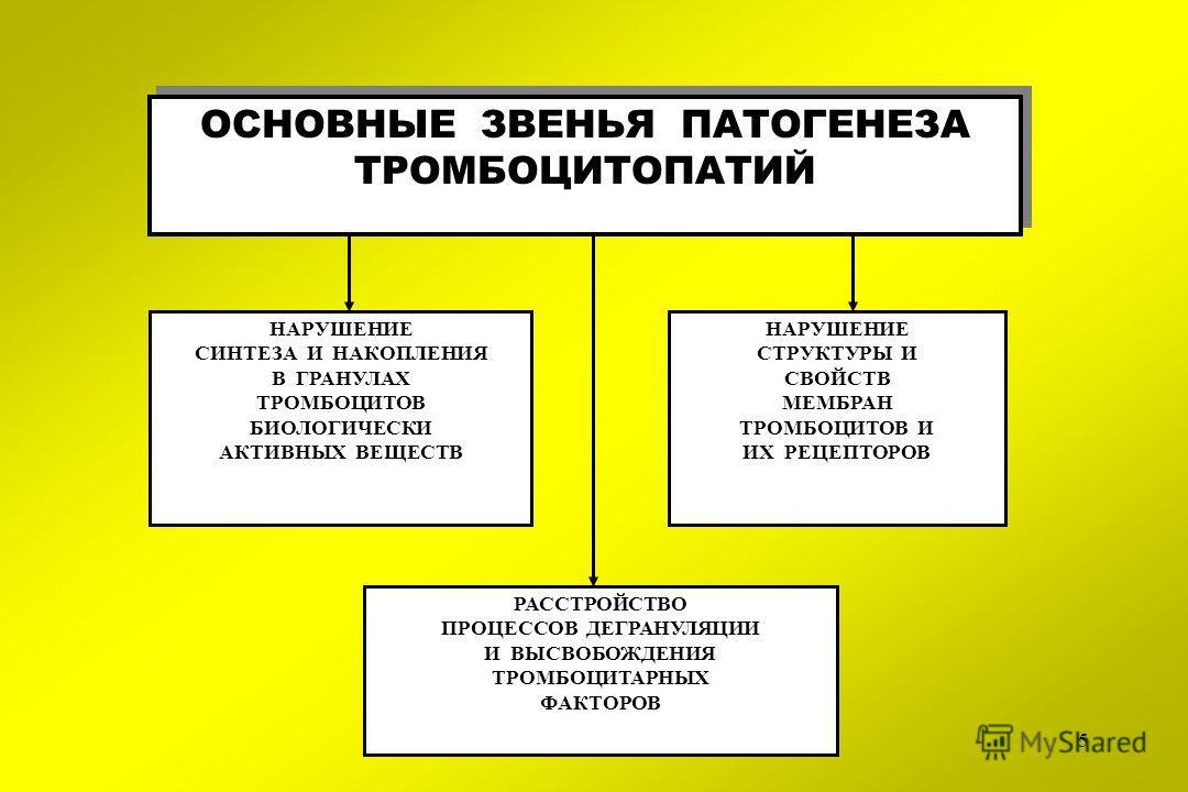 5 ОСНОВНЫЕ ЗВЕНЬЯ ПАТОГЕНЕЗА ТРОМБОЦИТОПАТИЙ ОСНОВНЫЕ ЗВЕНЬЯ ПАТОГЕНЕЗА ТРОМБОЦИТОПАТИЙ НАРУШЕНИЕ СИНТЕЗА И НАКОПЛЕНИЯ В ГРАНУЛАХ ТРОМБОЦИТОВ БИОЛОГИЧЕСКИ АКТИВНЫХ ВЕЩЕСТВ РАССТРОЙСТВО ПРОЦЕССОВ ДЕГРАНУЛЯЦИИ И ВЫСВОБОЖДЕНИЯ ТРОМБОЦИТАРНЫХ ФАКТОРОВ НА