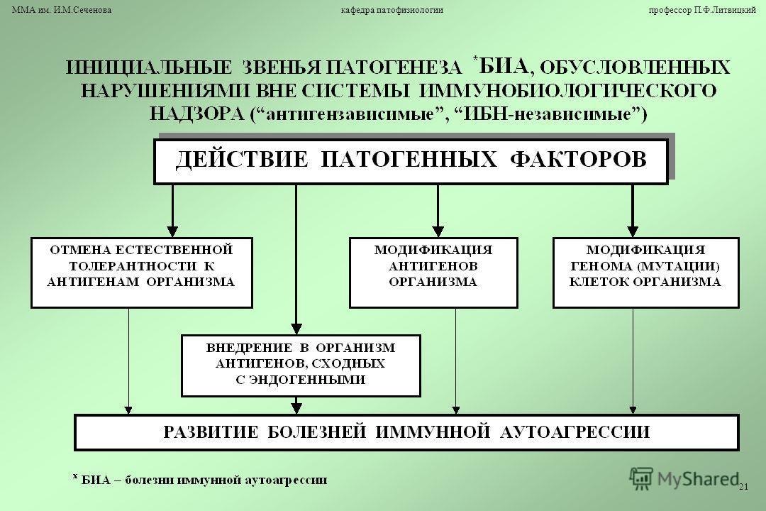 ММА им. И.М.Сеченова кафедра патофизиологии профессор П.Ф.Литвицкий 21