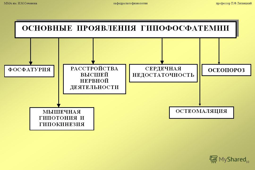 ОСЕОПОРОЗ ММА им. И.М.Сеченова кафедра патофизиологии профессор П.Ф.Литвицкий 10