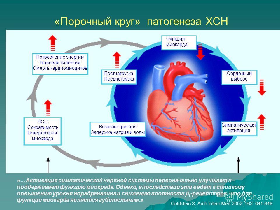 «Порочный круг» патогенеза ХСН Функция миокарда Сердечный выброс Симпатическая активация Постнагрузка Преднагрузка Вазоконстрикция Задержка натрия и воды Потребление энергии Тканевая гипоксия Смерть кардиомиоцитов ЧСС Сократимость Гипертрофия миокард