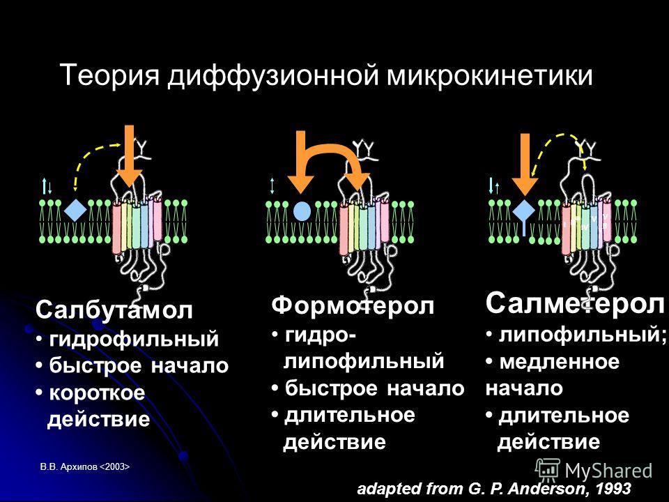 В.В. Архипов Теория диффузионной микрокинетики Салметерол липофильный; медленное начало длительное действие Салбутамол гидрофильный быстрое начало короткое действие Формотерол гидро- липофильный быстрое начало длительное действие I II III IV VIVI V V