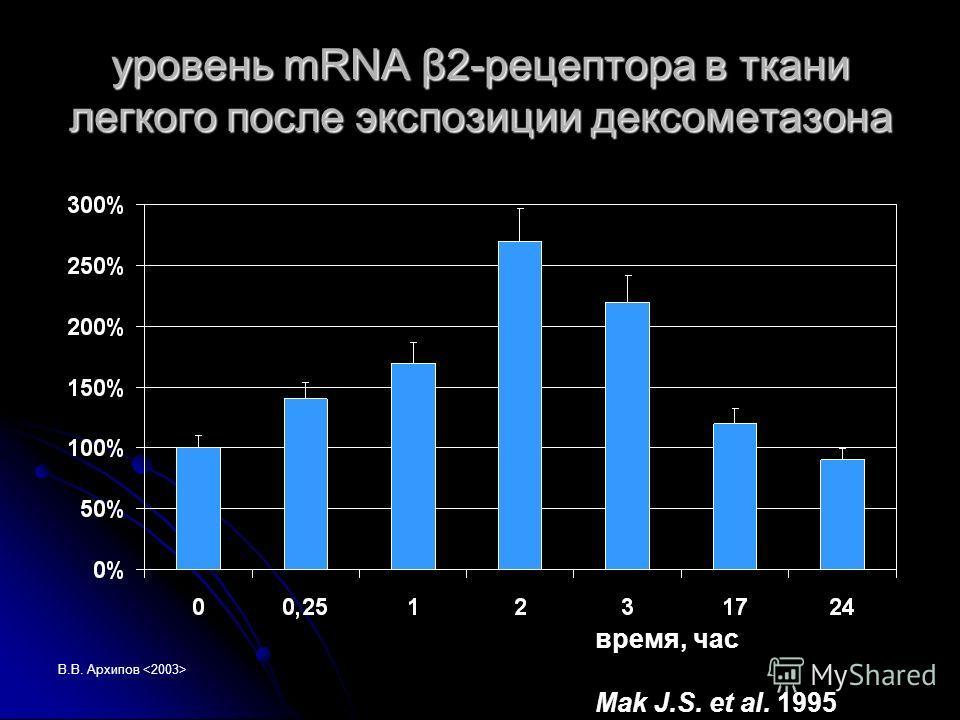 В.В. Архипов уровень mRNA β2-рецептора в ткани легкого после экспозиции дексометазона время, час Mak J.S. et al. 1995