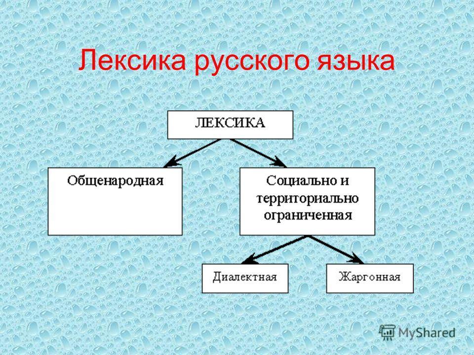 Реферат по лексике русского языка 1315