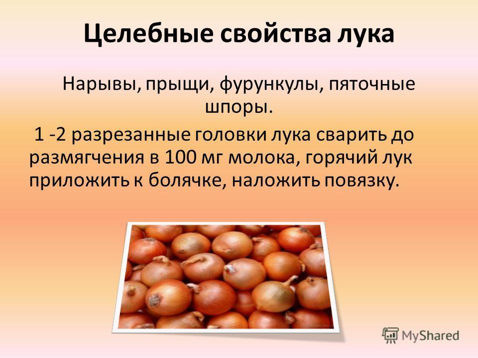 Целебные свойства лука Нарывы, прыщи, фурункулы, пяточные шпоры. 1 -2 разрезанные головки лука сварить до размягчения в 100 мг молока, горячий лук приложить к болячке, наложить повязку.