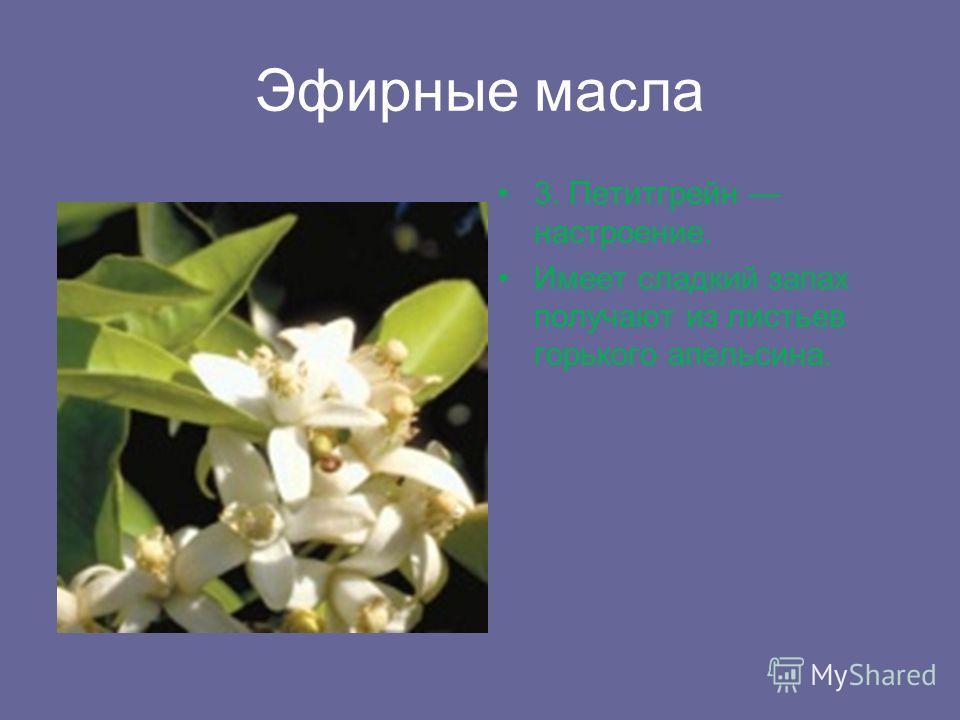 Эфирные масла 3. Петитгрейн настроение. Имеет сладкий запах получают из листьев горького апельсина.