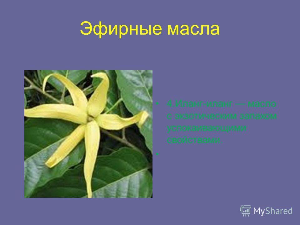Эфирные масла 4.Иланг-иланг масло с экзотическим запахом успокаивающими свойствами.