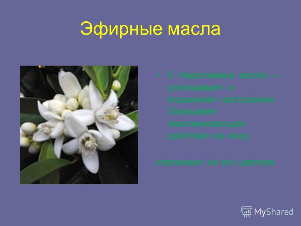 Эфирные масла 5. Неролиевое масло успокаивает и поднимает настроение. Оказывает омолаживающее действие на кожу. извлекают из его цветков.