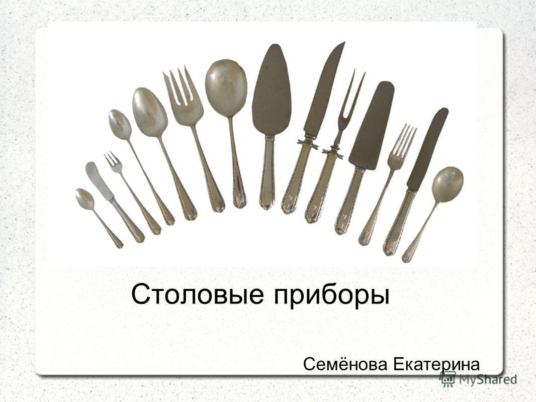 Столовые приборы Семёнова Екатерина