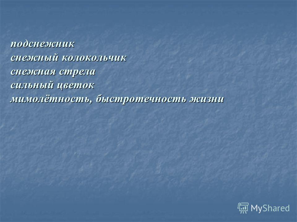 подснежник снежный колокольчик снежная стрела сильный цветок мимолётность, быстротечность жизни