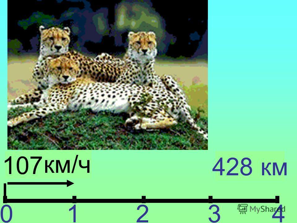? км/ч 01234 428 км 107