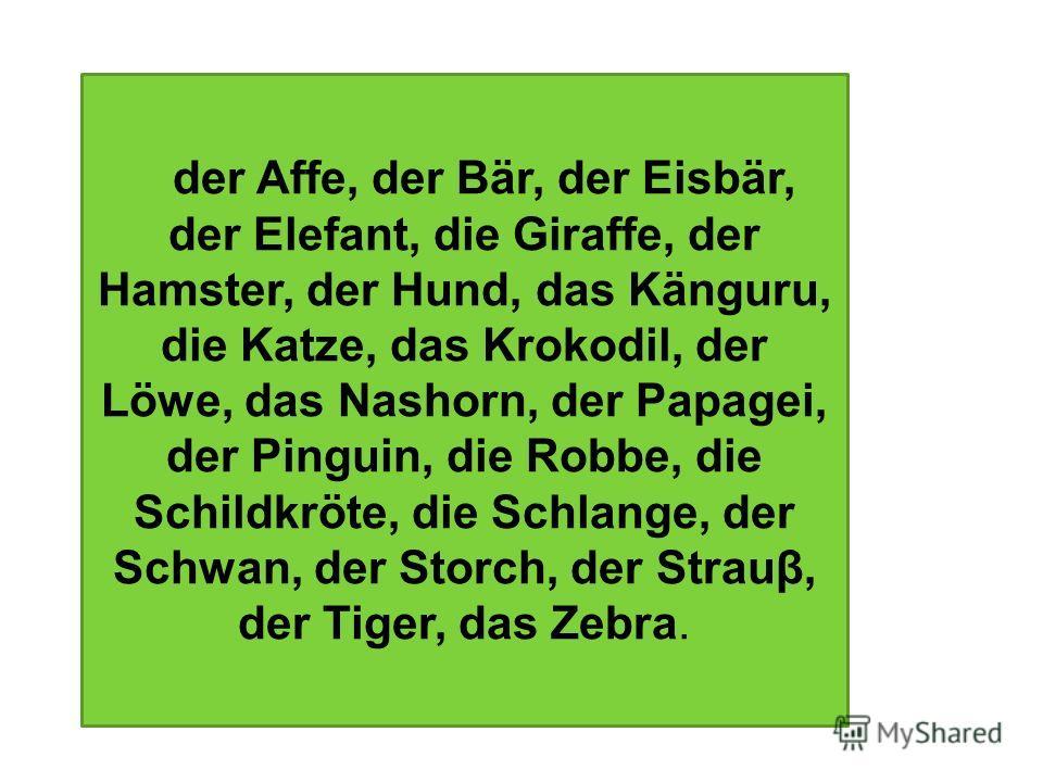 der Affe, der Bär, der Eisbär, der Elefant, die Giraffe, der Hamster, der Hund, das Känguru, die Katze, das Krokodil, der Löwe, das Nashorn, der Papagei, der Pinguin, die Robbe, die Schildkröte, die Schlange, der Schwan, der Storch, der Strauβ, der T