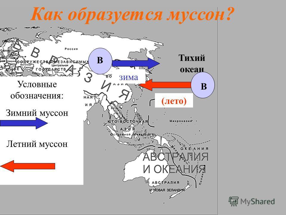 Тихий океан Как образуется муссон? В В Условные обозначения: Зимний муссон Летний муссон (лето) зима