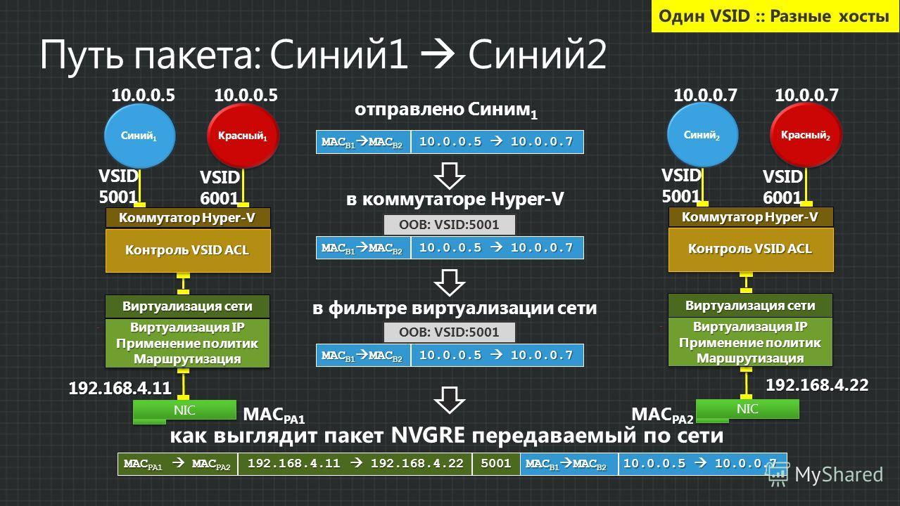 отправлено Синим 1 MAC B1 MAC B2 10.0.0.5 10.0.0.7 OOB: VSID:5001 в коммутаторе Hyper-V MAC B1 MAC B2 10.0.0.5 10.0.0.7 в фильтре виртуализации сети OOB: VSID:5001 MAC B1 MAC B2 10.0.0.5 10.0.0.7 как выглядит пакет NVGRE передаваемый по сети MAC PA1