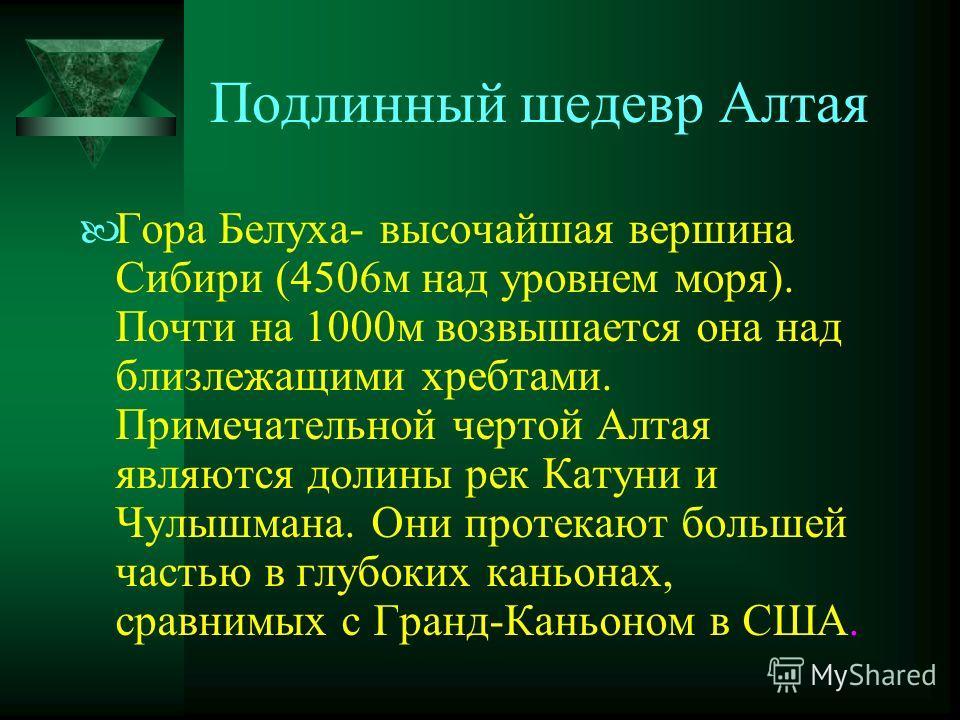 Подлинный шедевр Алтая Гора Белуха- высочайшая вершина Сибири (4506м над уровнем моря). Почти на 1000м возвышается она над близлежащими хребтами. Примечательной чертой Алтая являются долины рек Катуни и Чулышмана. Они протекают большей частью в глубо