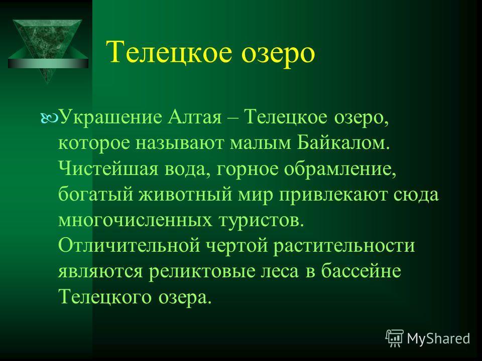 Телецкое озеро Украшение Алтая – Телецкое озеро, которое называют малым Байкалом. Чистейшая вода, горное обрамление, богатый животный мир привлекают сюда многочисленных туристов. Отличительной чертой растительности являются реликтовые леса в бассейне