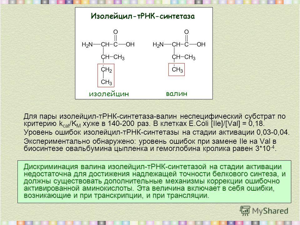 Для пары изолейцил-тРНК-синтетаза-валин неспецифический субстрат по критерию k cat /K M хуже в 140-200 раз. В клетках E.Coli [Ile]/[Val] = 0,18. Уровень ошибок изолейцил-тРНК-синтетазы на стадии активации 0,03-0,04. Экспериментально обнаружено: урове