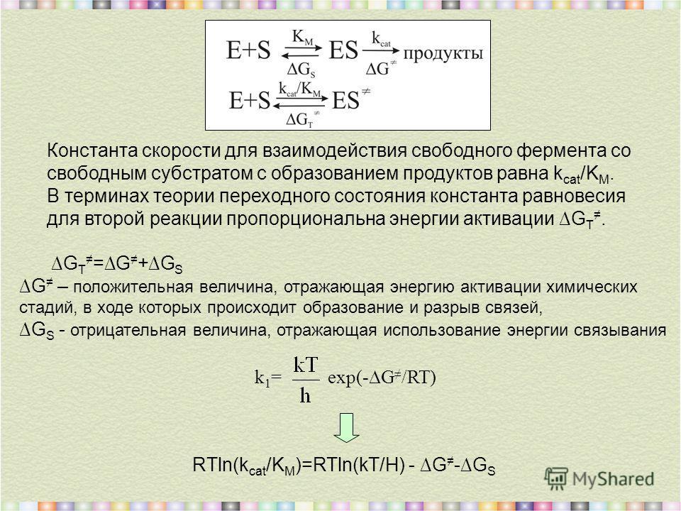 RTln(k cat /K M )=RTln(kT/H) - G -G S Константа скорости для взаимодействия свободного фермента со свободным субстратом с образованием продуктов равна k cat /K M. В терминах теории переходного состояния константа равновесия для второй реакции пропорц