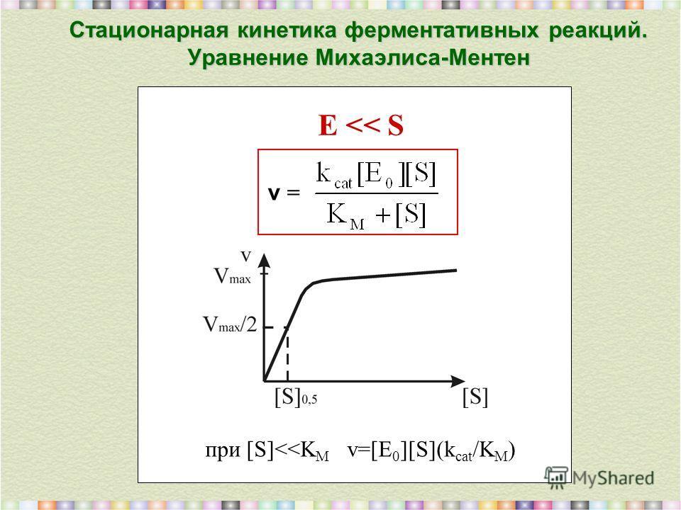 Стационарная кинетика ферментативных реакций. Уравнение Михаэлиса-Ментен v = E