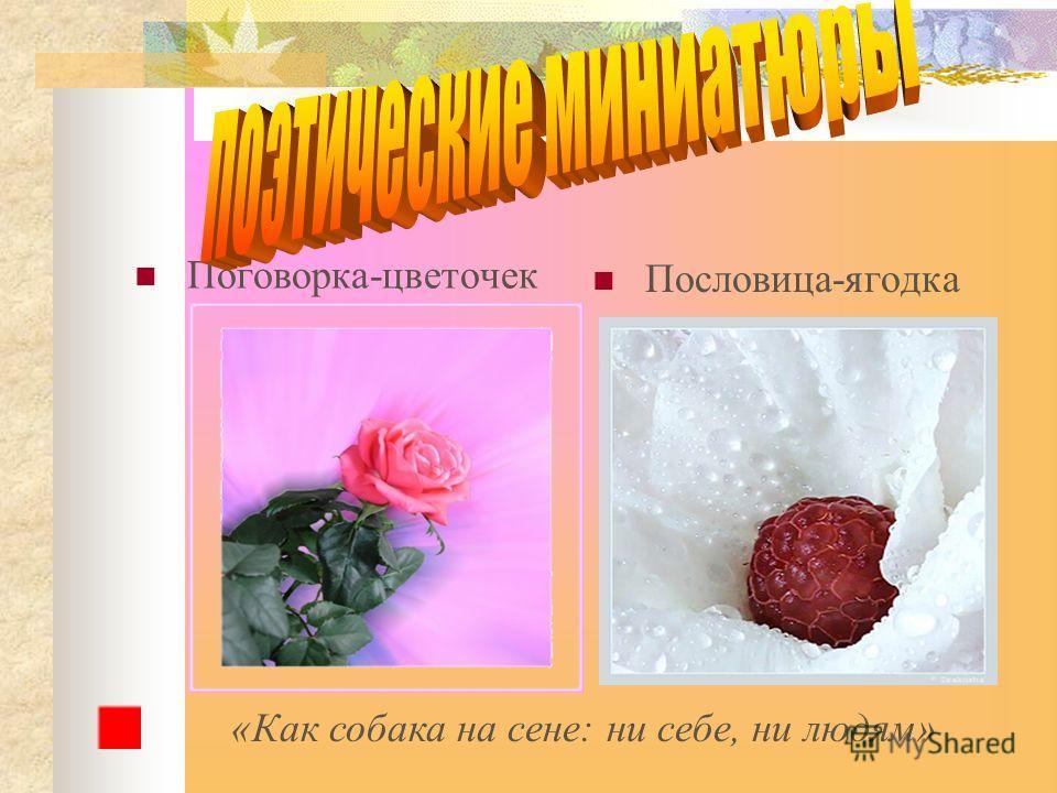 Поговорка-цветочек Пословица-ягодка «Как собака на сене: ни себе, ни людям»