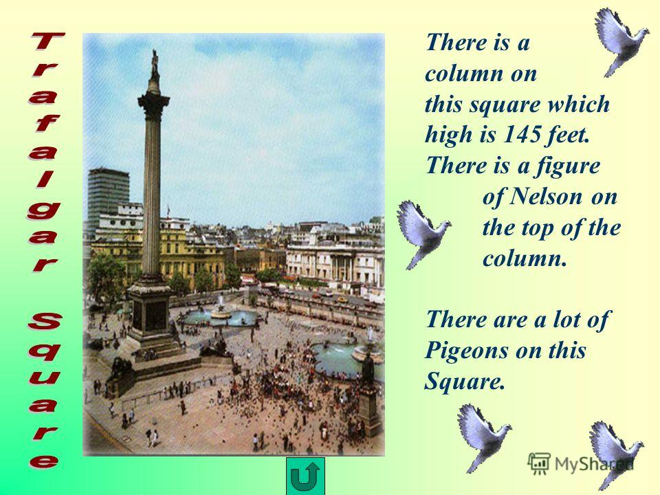 There is a column on this square which high is 145 feet. There is a figure of Nelson on the top of the column. There are a lot of Pigeons on this Square.
