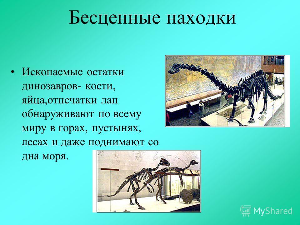 Бесценные находки Ископаемые остатки динозавров- кости, яйца,отпечатки лап обнаруживают по всему миру в горах, пустынях, лесах и даже поднимают со дна моря.