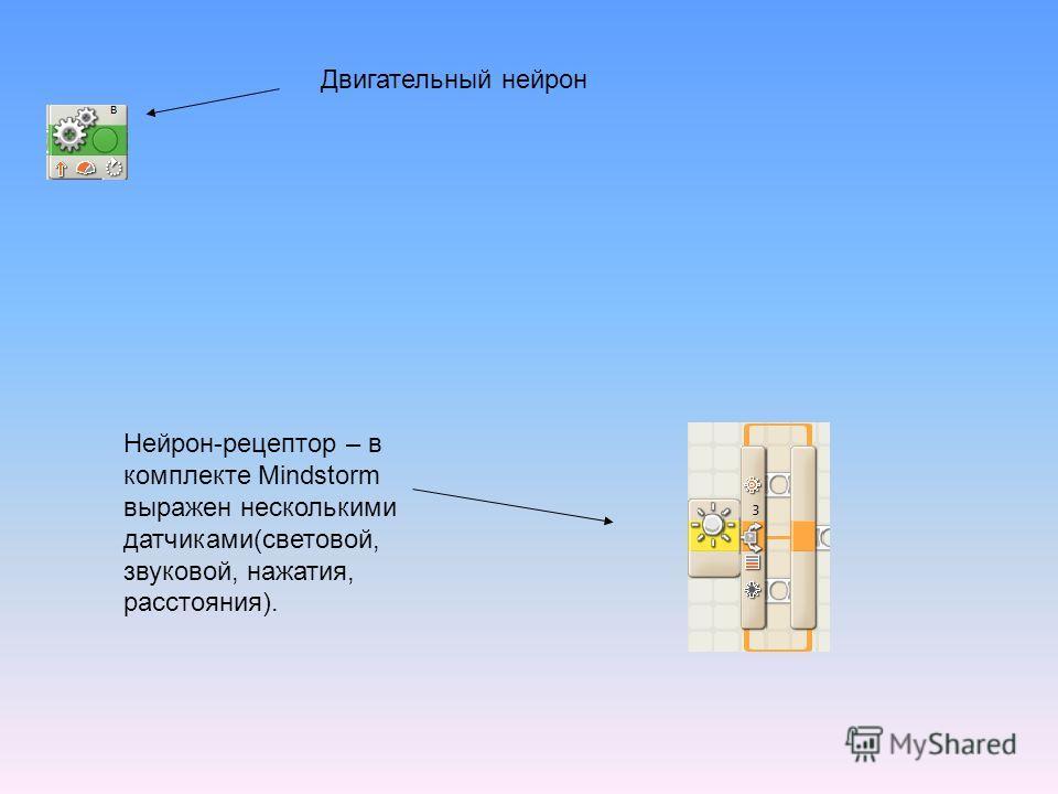 Двигательный нейрон Нейрон-рецептор – в комплекте Mindstorm выражен несколькими датчиками(световой, звуковой, нажатия, расстояния).