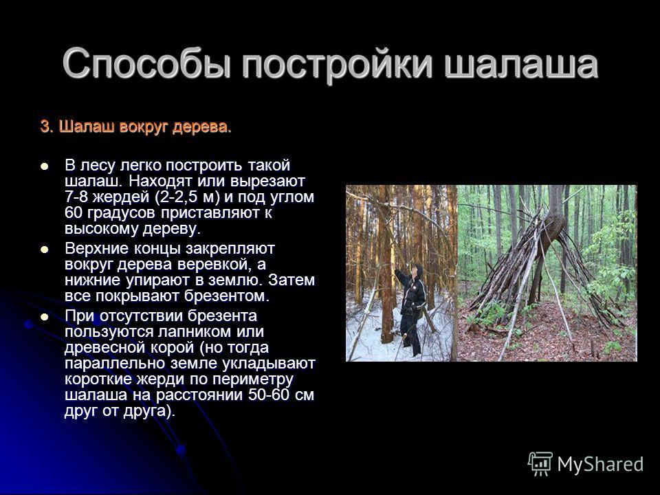 Способы постройки шалаша 3. Шалаш вокруг дерева. В лесу легко построить такой шалаш. Находят или вырезают 7-8 жердей (2-2,5 м) и под углом 60 градусов приставляют к высокому дереву. В лесу легко построить такой шалаш. Находят или вырезают 7-8 жердей