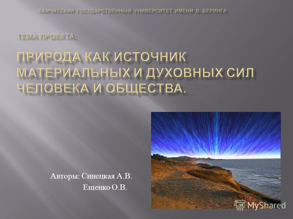 Авторы : Синецкая А. В. Ещенко О. В.
