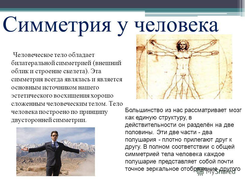 Симметрия у человека Человеческое тело обладает билатеральной симметрией (внешний облик и строение скелета). Эта симметрия всегда являлась и является основным источником нашего эстетического восхищения хорошо сложенным человеческим телом. Тело челове