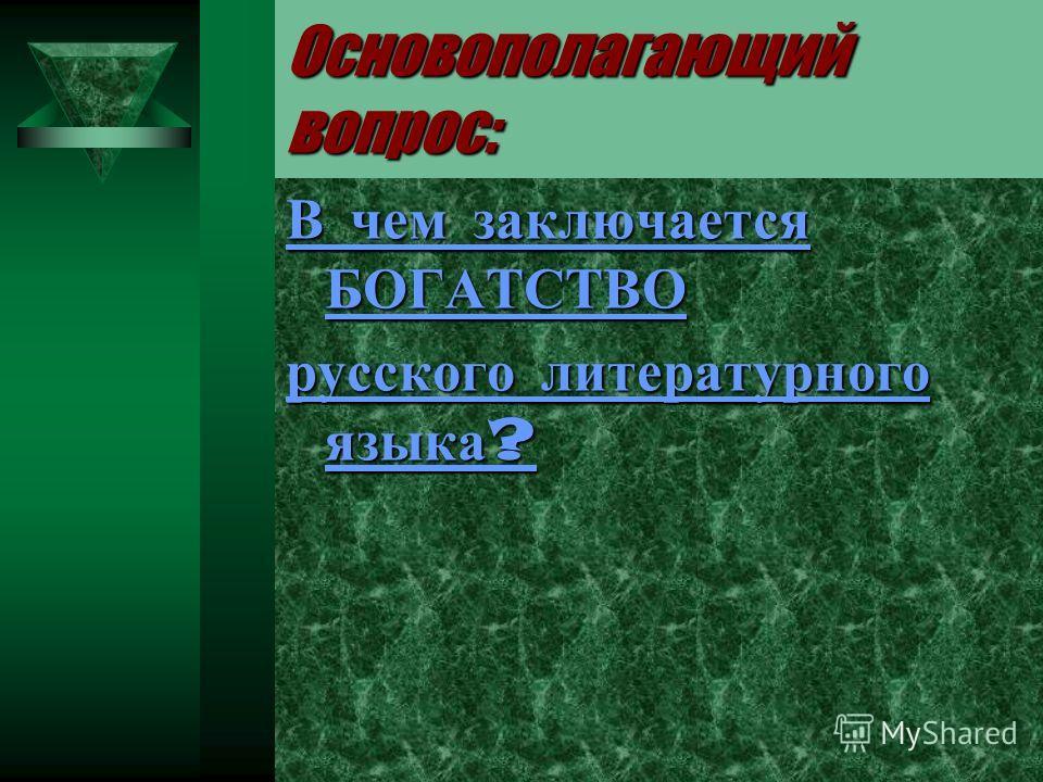 Основополагающий вопрос: В чем заключается БОГАТСТВО русского литературного языка?