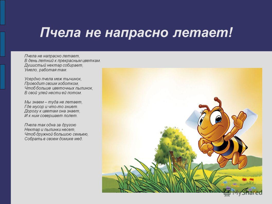 Пчела не напрасно летает! Пчела не напрасно летает, В день летний к прекрасным цветкам. Душистый нектар собирает, Умело, работая там. Усердно пчела меж тычинок, Проводит своим хоботком, Чтоб больше цветочных пылинок, В свой улей нести ей потом. Мы зн