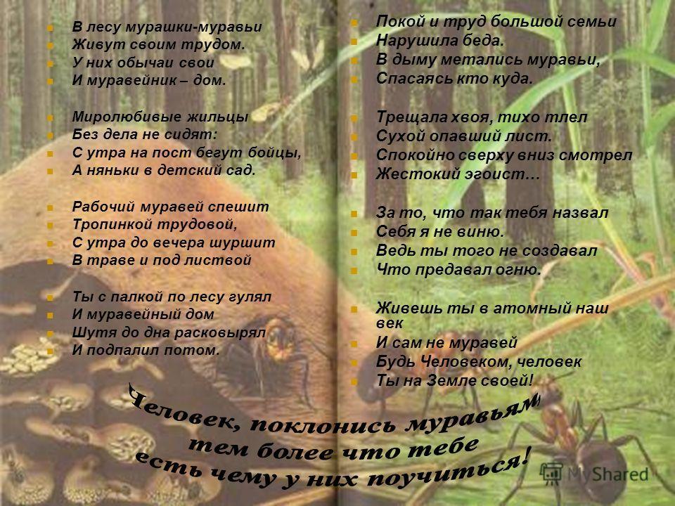 В лесу мурашки-муравьи Живут своим трудом. У них обычаи свои И муравейник – дом. Миролюбивые жильцы Без дела не сидят: С утра на пост бегут бойцы, А няньки в детский сад. Рабочий муравей спешит Тропинкой трудовой, С утра до вечера шуршит В траве и по