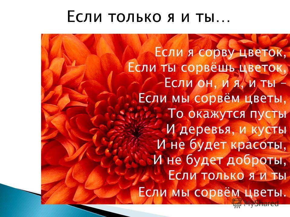 Если я сорву цветок, Если ты сорвёшь цветок, Если он, и я, и ты – Если мы сорвём цветы, То окажутся пусты И деревья, и кусты И не будет красоты, И не будет доброты, Если только я и ты Если мы сорвём цветы. Если только я и ты…