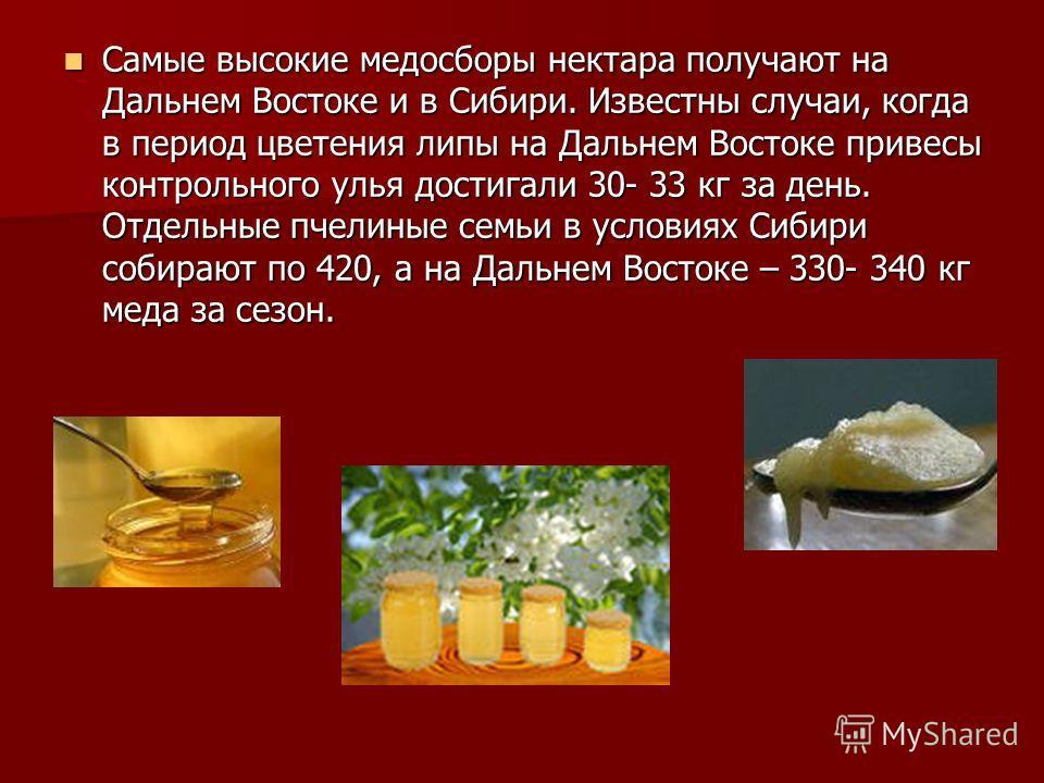 Самые высокие медосборы нектара получают на Дальнем Востоке и в Сибири. Известны случаи, когда в период цветения липы на Дальнем Востоке привесы контрольного улья достигали 30- 33 кг за день. Отдельные пчелиные семьи в условиях Сибири собирают по 420